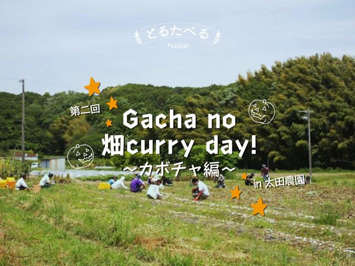 gachano畑curryday